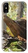Foxy Stump IPhone Case
