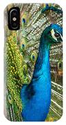 Framed In Feathers IPhone Case