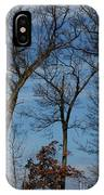 Framed In Oak - 1 IPhone Case