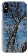 Framed In Oak - 2 IPhone Case