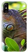 Friendly Iguana IPhone Case