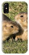 Friendly Prairie Dogs IPhone Case