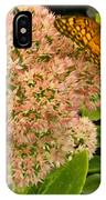 Fritillary On Flower IPhone Case