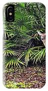 From The Palmetto Bushes IPhone Case