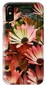 Frosted African Daisies IPhone Case