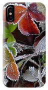 Frosted Strawberries IPhone Case