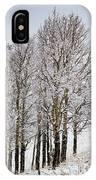 Frosty Aspen Trees IPhone Case