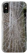 Frosty Web IPhone Case