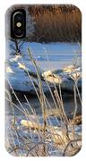 Frozen Fantasy  IPhone Case