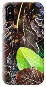 Frozen Oak Leaves, Glenveagh National IPhone Case