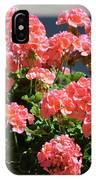 Full Bloom Geraniums  IPhone Case