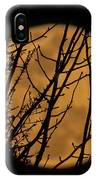 Full Moon Through The Branches IPhone Case