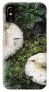 Fungi No 3 IPhone Case