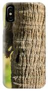 Funky Ear Squirrel IPhone Case