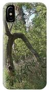 Funky Tree On Trail In Peters Canyon IPhone Case
