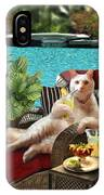 Funny Pet  Vacationing Kitty IPhone Case