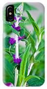 Salvia At Pilgrim Place In Claremont-california  IPhone Case