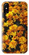 Gaia's Gold IPhone Case