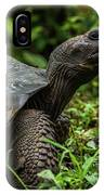 Galapagos Giant Tortoise In Profile In Woods IPhone Case