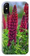Gallery Red Lupines IPhone Case