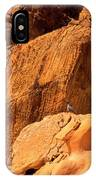 Gambels Quail In Profile Valley Of Fire IPhone Case