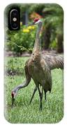 Garden Sandhills IPhone Case