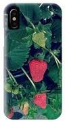 Ripening Garden Strawberries  IPhone Case
