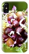Garlic Top IPhone Case