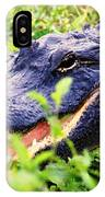 Gator 1 IPhone Case