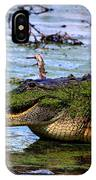 Gator Growl IPhone Case