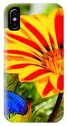 Gazania And Blue Butterfly IPhone Case