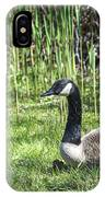 Geese IPhone Case