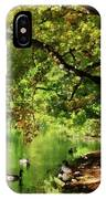 Geese By Pond In Autumn IPhone Case