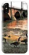 Geese On A Stroll IPhone Case
