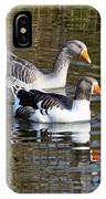Geese On The Canal   IPhone Case