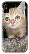 Gentle Ginger IPhone Case