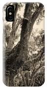 Georgia Live Oaks And Spanish Moss In Sepia IPhone Case