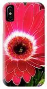 Gerbera Bella IPhone Case