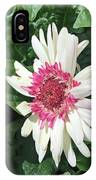 Gerbera Daisy And Bud IPhone Case