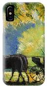 Germany Baden-baden Lichtentaler Allee Spring  IPhone Case