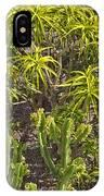 Getty Garden #10 IPhone Case