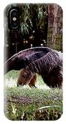Giant Anteater IPhone Case