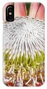 Giant Pink King Protea Flower IPhone X Case