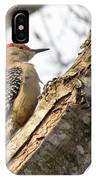 Giant Red Headed Woodpecker  IPhone Case