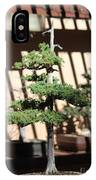 Giant Redwood Bonsai  IPhone Case