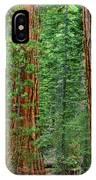 Giant Sequoias Sequoiadendron Gigantium Yosemite Np Ca IPhone Case
