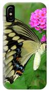 Giant Swallowtail Butterfly  IIi IPhone Case