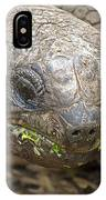Giant Tortoise IPhone Case