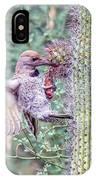 Gilded Flicker 4167 IPhone Case