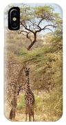 Giraffe Camouflage IPhone Case